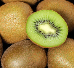 kiwi verde biodinamico